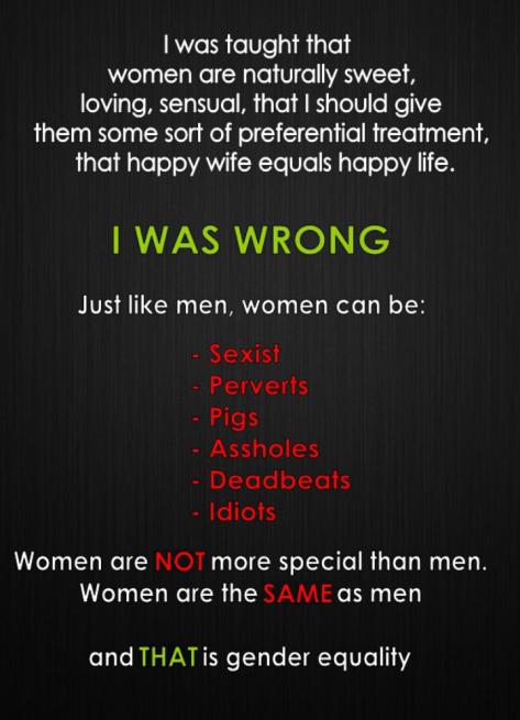 feminism13